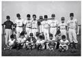 MARVA Champion Moose Babe Ruth ball club of 1956..jpg