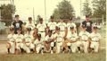 Little League District Champions 1971.jpg
