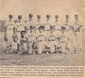 Little League All-Stars - 1968.jpg