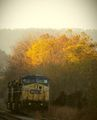 Autumn on the Railroad November 5, 2015.jpg