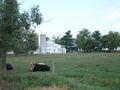 Needwood Farms on Rt 17 headed to Burkittsville - September 2010.jpg
