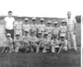 Minor League Tigers 1967.jpg