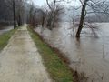 Flood of 2010 Canal, tow path and Potomac River west of Sandy Hook, across the river from Harper's Ferry..jpg